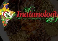Indianology Café: New Indian Restaurant Franchise with Great Potential