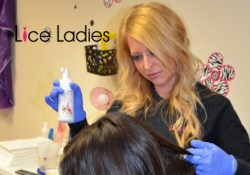 Lice Ladies Franchise Press Release
