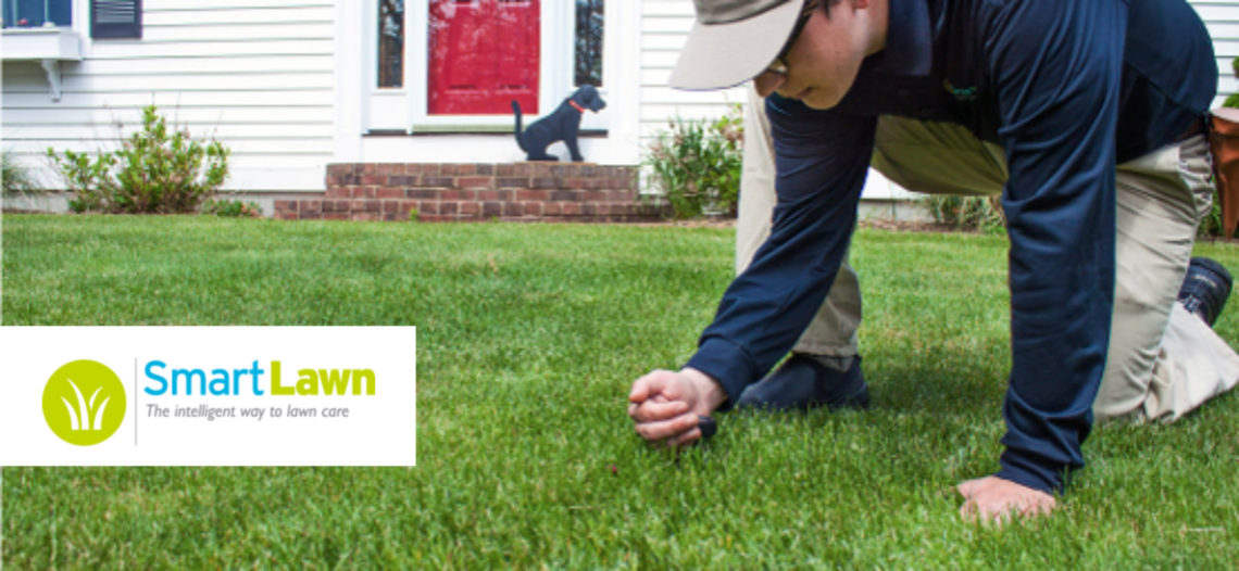 Smart Lawn: The New and Exciting Lawn Care Franchise