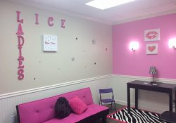 Lice Ladies extend their much-needed service with new franchise in Tampa!