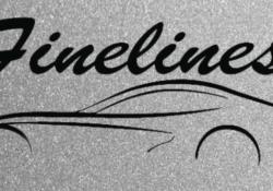 Finelines Auto Repair Franchise Model