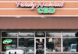 The Time is NOW for the Purely Natural CBD Franchise!